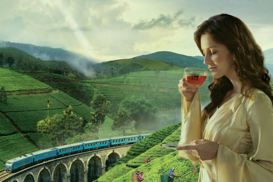 Netbina runs ad campaign for Ceylon Tea